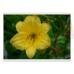 Flor amarilla tarjetón