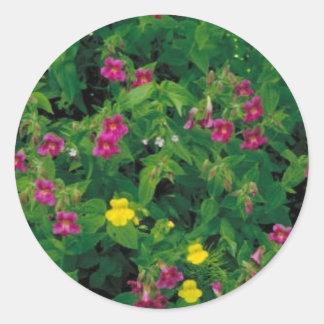 Flor amarilla y púrpura del mono pegatina redonda