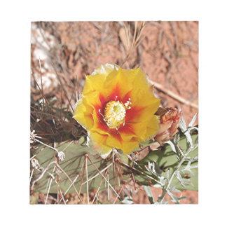 Flor amarilla y roja del cactus en la floración bloc de notas