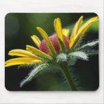 Flor amarilla y roja tapete de raton
