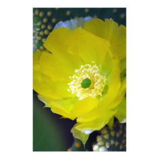 Flor amarilla y significado del cactus  papeleria