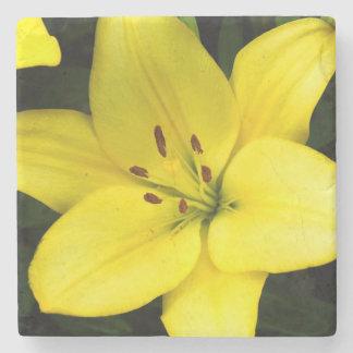 Flor amarillo de la flor del lirio posavasos de piedra