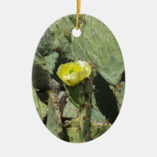 Flor amarillo del higo chumbo ornamentos para reyes magos