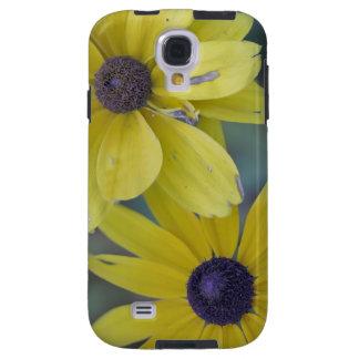 Flor amarillo del rudbeckia