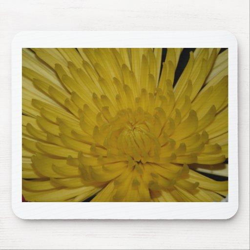 flor, amarillo mouse pad