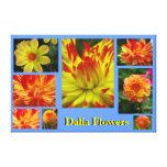 Flor amarillo-naranja de Dalia Impresiones En Lona Estiradas