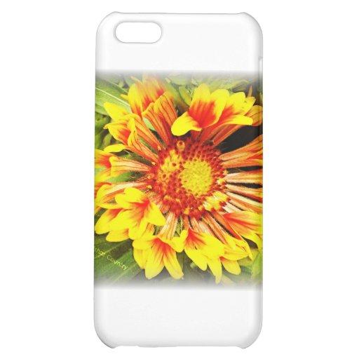 Flor amarillo-naranja hermosa