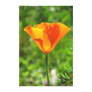 Flor amarillo-naranja hermosa impresion de lienzo
