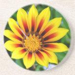 Flor amarillo y rojo soleado de la flor posavasos manualidades