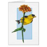 Flor americana del Goldfinch y del Zinnia Tarjeton