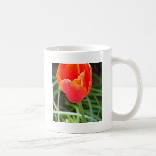 Flor anaranjada brillante taza clásica