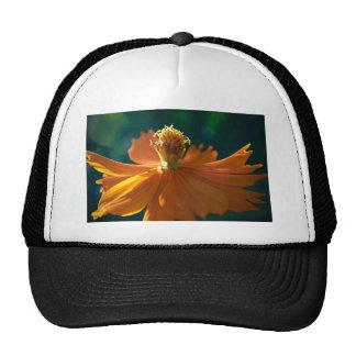 Flor anaranjada (cercana) gorros bordados