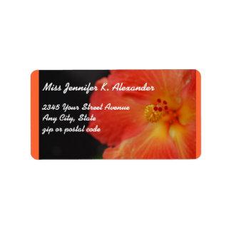 Flor anaranjada coralina del hibisco etiqueta de dirección