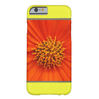 Flor anaranjada de Dalia en amarillo Funda De iPhone 6 Barely There