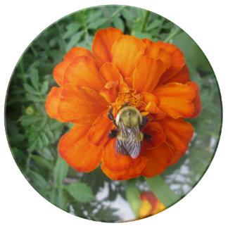 Flor anaranjada de la abeja de la maravilla platos de cerámica