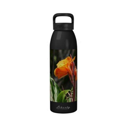 flor anaranjada de la ave del paraíso botella de agua