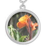 flor anaranjada de la ave del paraíso grimpola personalizada