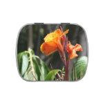 flor anaranjada de la ave del paraíso latas de caramelos
