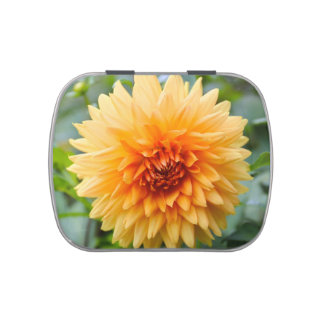 Flor anaranjada de la dalia jarrones de dulces