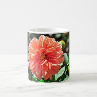 Flor anaranjada de la dalia taza