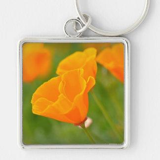 Flor anaranjada de la macro de la amapola llavero cuadrado plateado