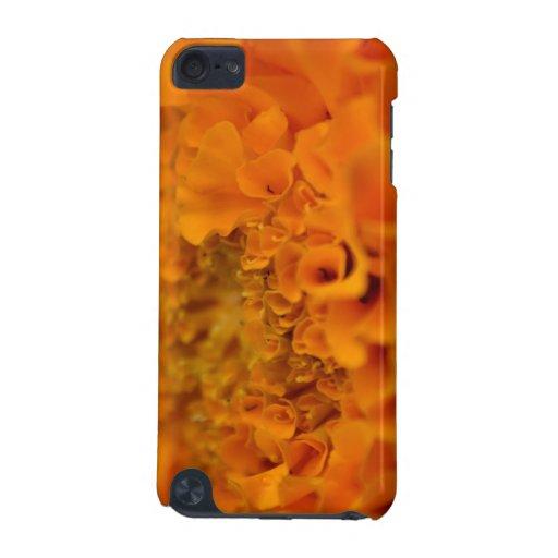 Flor anaranjada de la maravilla