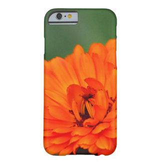 Flor anaranjada de la maravilla funda de iPhone 6 slim