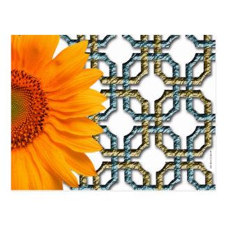 Flor anaranjada de Sun Postales