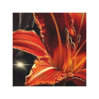 Flor anaranjada del deslumbramiento impresiones en lona estiradas
