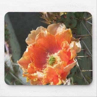 Flor anaranjada del higo chumbo tapete de ratón