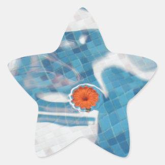 Flor anaranjada flotante de la primavera en agua colcomanias forma de estrellaes personalizadas
