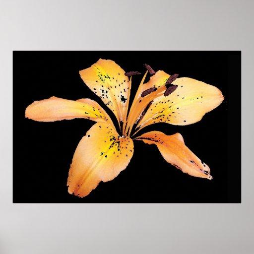 Flor anaranjada impresiones