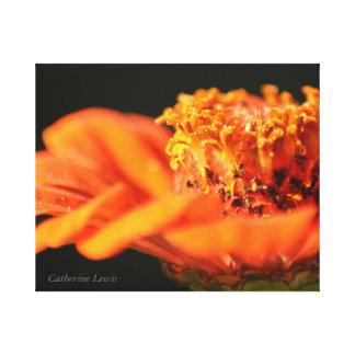 Flor anaranjada lona estirada galerías