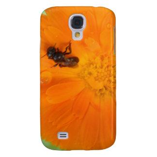 Flor anaranjada - maravilla