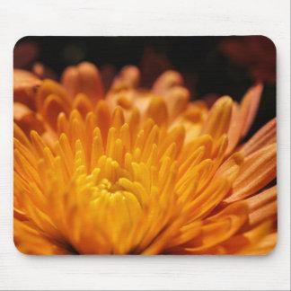 Flor anaranjada Mousepad del crisantemo