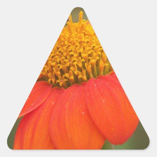 Flor anaranjada calcomanías de trianguloes personalizadas