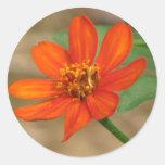 Flor anaranjada pegatina redonda
