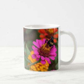 Flor anaranjada rosada de la abeja, lo que, es ver tazas