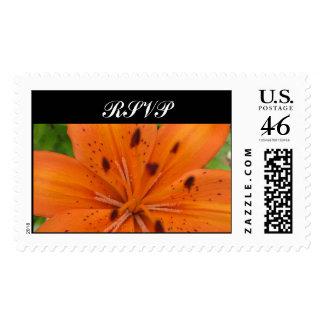 Flor anaranjada RSVP que casa el sello