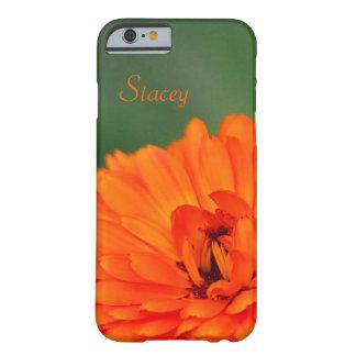 Flor anaranjada Stacey de la maravilla