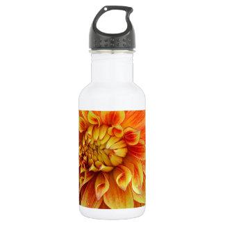 Flor anaranjada y amarilla de la dalia