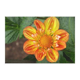 Flor anaranjada y amarilla impresión en lienzo