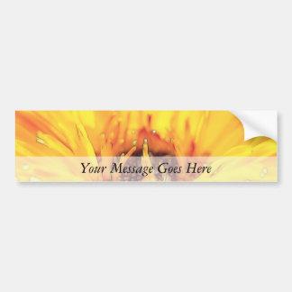 Flor anaranjado brillante del Calendula Pegatina Para Auto