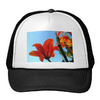 Flor anaranjado gorros
