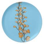 Flor anaranjado platos de comidas