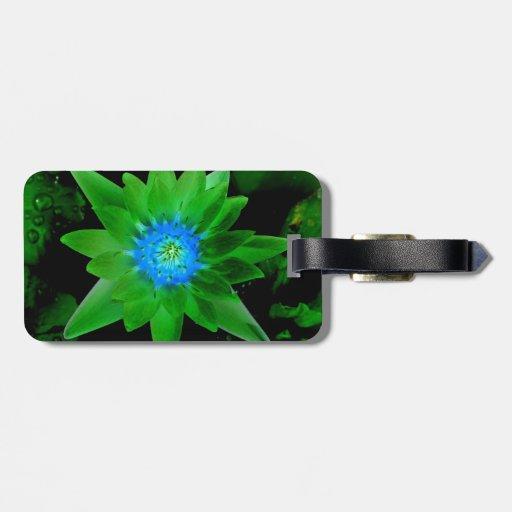 flor aseada verde del lirio de agua contra las hoj etiquetas de equipaje