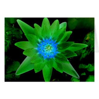 flor aseada verde del lirio de agua contra las hoj felicitaciones
