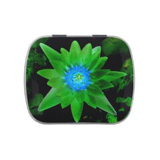 flor aseada verde del lirio de agua contra las jarrones de dulces