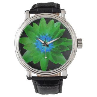 flor aseada verde del lirio de agua contra las reloj de mano