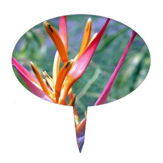Flor aumentada de Heliconia Palillos De Tarta